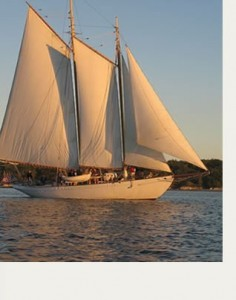 White schooner under sail near sunset with land in background