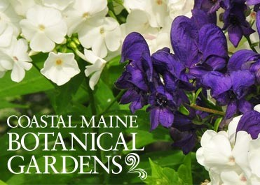 Coastal Maine Botanical Gardens - Gardens Aglow!