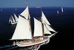 Schooner under full sail on a blue sea on a perfect Maine adventure